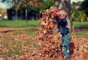 Boy playing in the leaves : Having fun childhood : LavoroCare supply Children's Care Workers : Health & Social Care Agency : Jobs